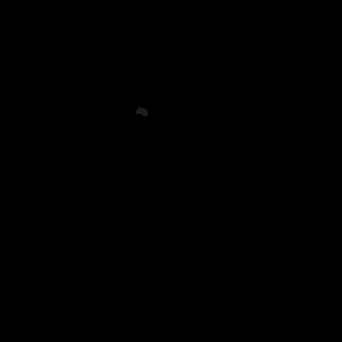 ル プリアージュ トラベルバッグ XL, ビルベリー