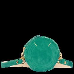 Riemtas, D91 Emerald, hi-res