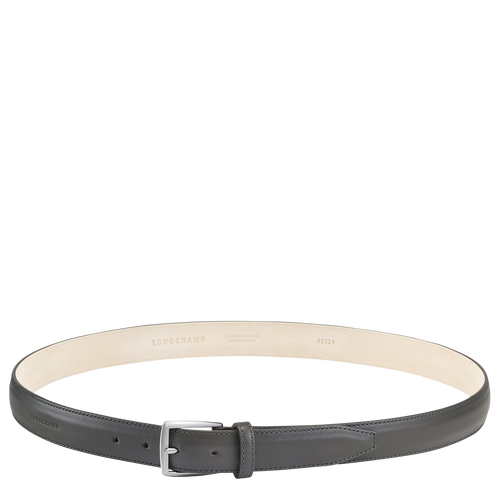 Men's belt, Grey, hi-res - View 1 of 1