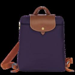 Backpack, Bilberry