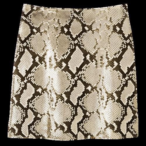 Skirt, Platinum, hi-res - View 1 of 1